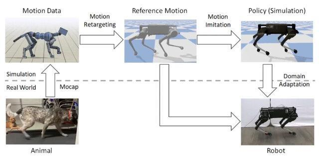 آموزش روبات های چهارپا با تقلید از رفتار حیوانات