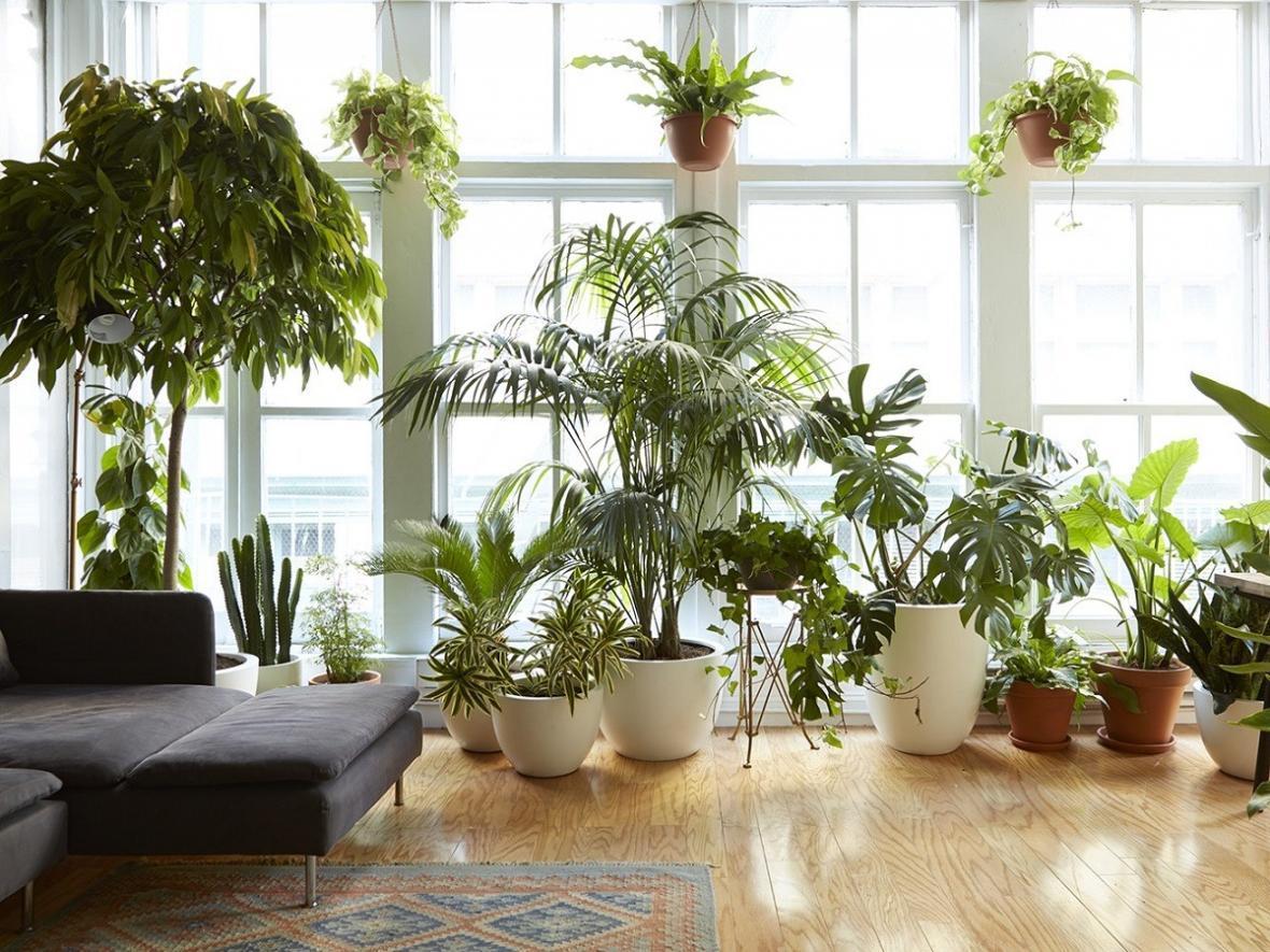 چیدمان گل در خانه : 20 ایده برای چیدمان انواع گل در خانه های امروزی