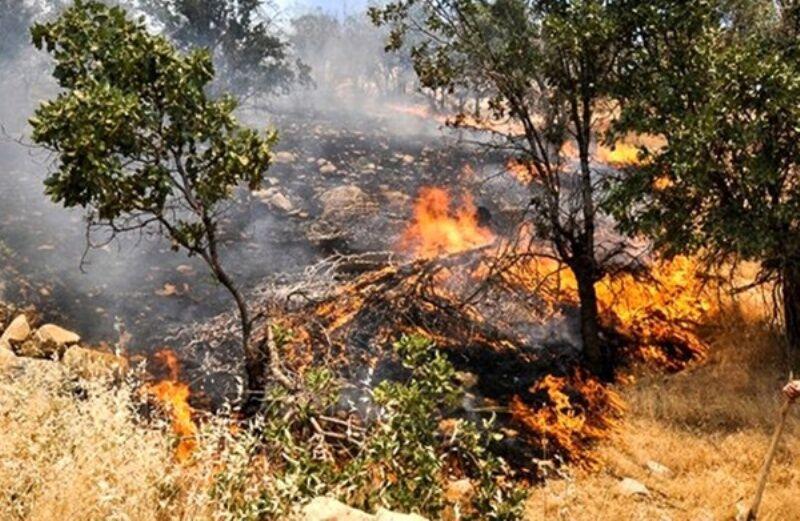 خبرنگاران آتش در مراتع بخش سوسن ایذه زبانه کشید