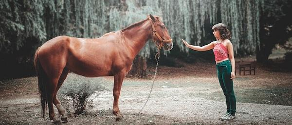 اسب درمانی؛ درمان بیماری های روانی به یاری اسب!