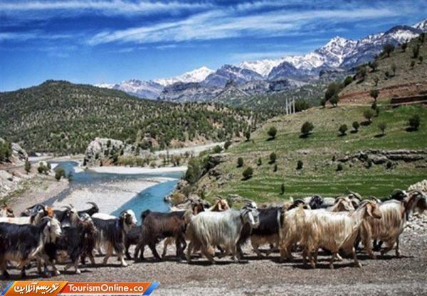 گردشگری عشایری بوشهر تقویت می گردد