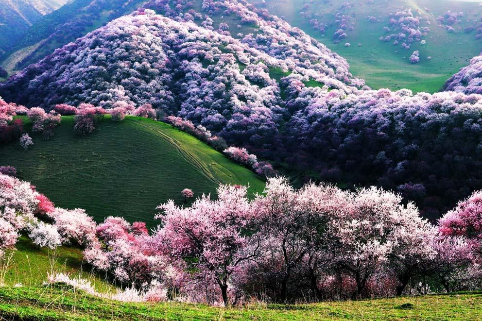 دره ییلی در کشور چین